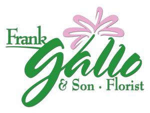 Frank Gallo Logo